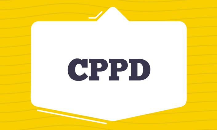 Publicado edital do processo eleitoral da CPPD do Campus Belo Jardim