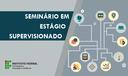 Seminário em Estágio Supervisionado_SITE.png