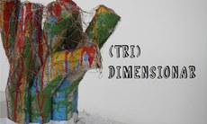 Escultura criada pelo estudante de Artes Visuais, Mardones Morais.