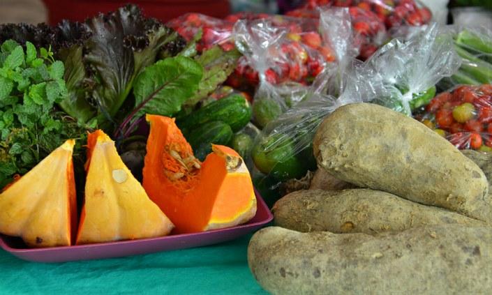 Dia Mundial da Alimentação é comemorado no IFPE com ações educativas
